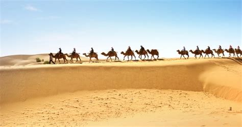 Tunisia Vacation, Tours & Travel Packages - 2020/21