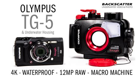 Olympus TG-5 Underwater Camera and Housing Review - ScubaBoard